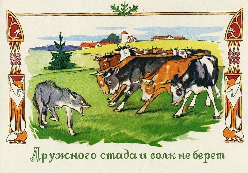 Дружного стада и волк не берет